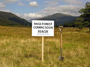 HAGS Forest coming soon
