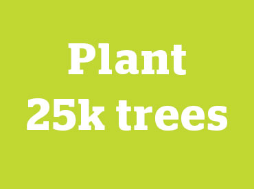 plant 25 thousand trees